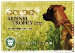 GOLDEN-Kennel 1.pl